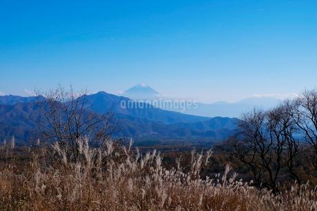 富士山の写真素材 [FYI02833324]