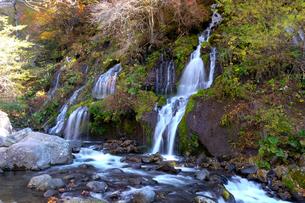 吐竜の滝の写真素材 [FYI02833353]
