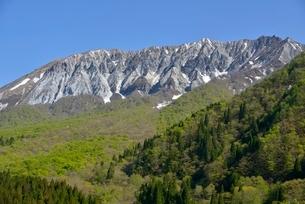 鍵掛峠からの大山の写真素材 [FYI02833415]
