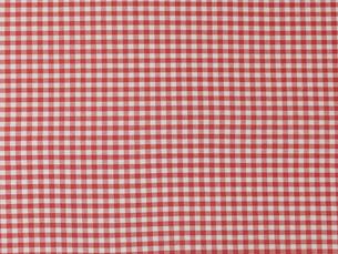 赤のチェックの布の写真素材 [FYI02833513]