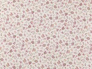 紫色の花柄の布の写真素材 [FYI02833559]