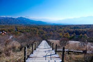 富士山の写真素材 [FYI02833608]
