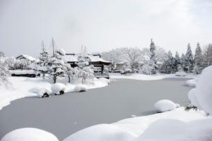 冬の風物詩雪吊りの写真素材 [FYI02833681]