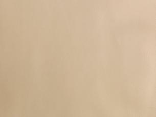 ベージュの皮の写真素材 [FYI02833721]
