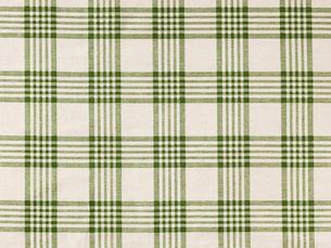 緑とベージュのチェックの布の写真素材 [FYI02833750]