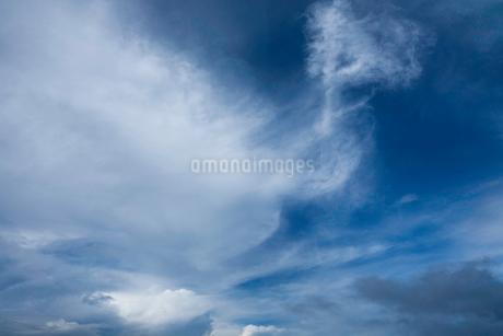 夏の深く青い空と白い雲の写真素材 [FYI02833829]