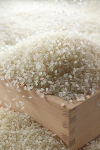 枡に入った米の写真素材 [FYI02833835]