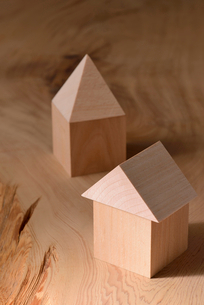 木の家の写真素材 [FYI02833872]