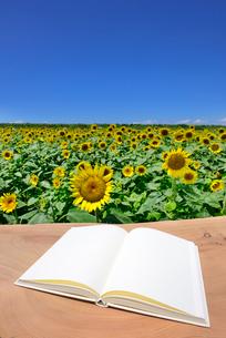 白紙の本とヒマワリ畑の写真素材 [FYI02833887]