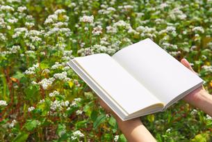 蕎麦畑と白紙の本の写真素材 [FYI02833921]