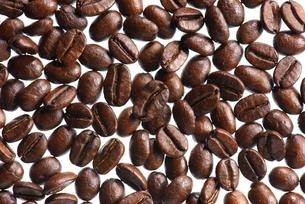 コーヒー豆の写真素材 [FYI02833954]
