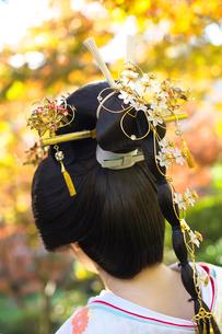 花嫁の後姿の写真素材 [FYI02834148]