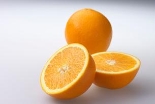 オレンジの写真素材 [FYI02834157]