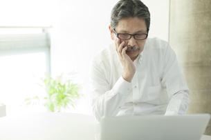 パソコンを閲覧するシニア男性の写真素材 [FYI02834356]