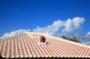 赤瓦の民家とシーサー 竹富島の写真素材 [FYI02834685]