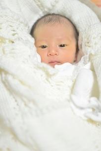 赤ちゃんの写真素材 [FYI02834687]