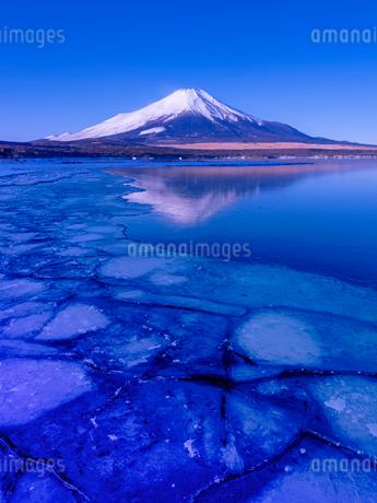富士山 山中湖畔冬の朝の写真素材 [FYI02834713]