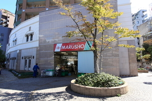丸正 北新宿店の写真素材 [FYI02834741]
