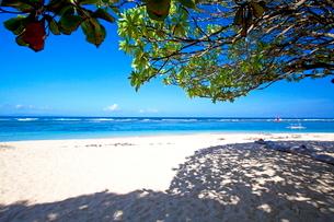 インドネシア バリ島 ヌサドゥアビーチの写真素材 [FYI02834756]