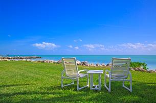 ビーチの芝生とイスの写真素材 [FYI02834817]