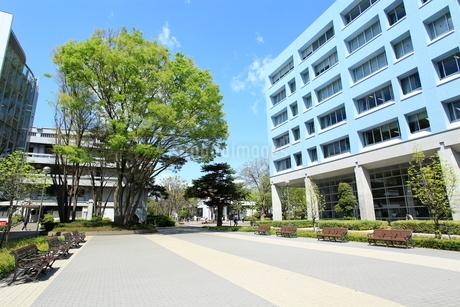 東京経済大学の写真素材 [FYI02835005]