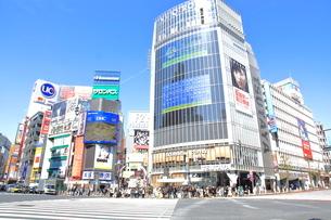 渋谷駅前スクランブル交差点の写真素材 [FYI02835016]