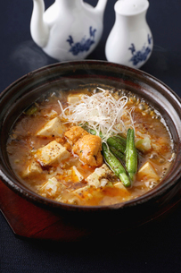 麻婆豆腐の写真素材 [FYI02835024]