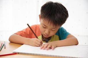 お絵かきをする子供の写真素材 [FYI02835091]