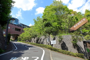 東京造形大学の写真素材 [FYI02835297]