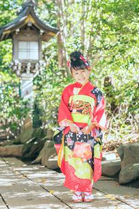 神社で笑顔を見せる着物の女の子の写真素材 [FYI02835467]
