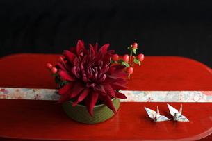 お正月のフラワーアレンジ の写真素材 [FYI02835503]