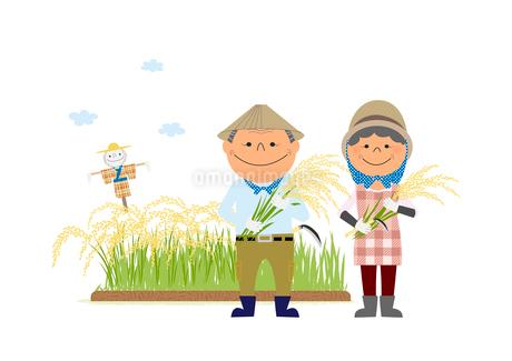 稲を持った農家の夫婦のイラスト素材 [FYI02835766]