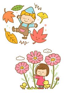 紅葉した落ち葉と子供、コスモスの花と子供のイラスト素材 [FYI02836095]