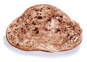 水彩で描かれたカットされたパンのイラスト素材 [FYI02836154]