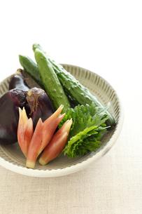 夏野菜縦位置の写真素材 [FYI02836206]