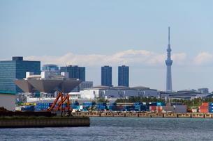 東京ビッグサイトと東京スカイツリーの写真素材 [FYI02836336]