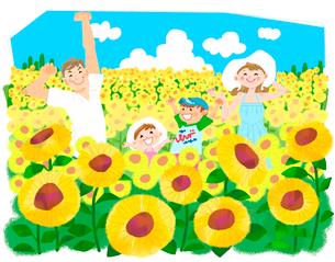 夏休みの思い出 ひまわり畑のイラスト素材 [FYI02836348]