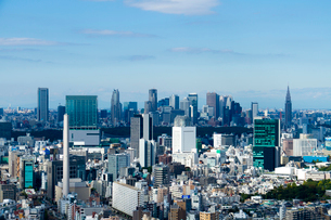 渋谷と新宿のビル群を望むの写真素材 [FYI02836412]