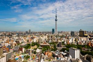 東京スカイツリーと浅草の町並みの写真素材 [FYI02836510]