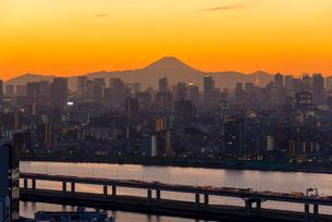 富士山と東京タワーライトアップの写真素材 [FYI02836561]