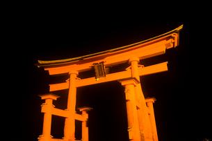 厳島神社のライトアップの写真素材 [FYI02836563]