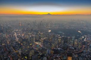 富士山と東京都心夜景マジックアワーの写真素材 [FYI02836573]