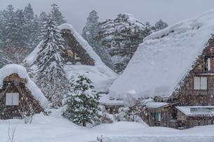 世界遺産 白川郷の雪景色の写真素材 [FYI02836664]