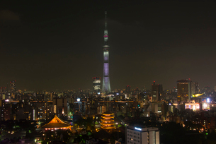 浅草寺と東京スカイツリーライトアップ(桜 咲)の写真素材 [FYI02836671]