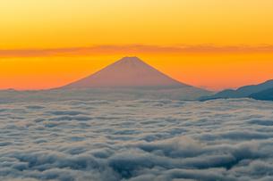 朝日に照らされる富士山と雲海の写真素材 [FYI02836704]