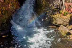 奥日光 竜頭の滝の紅葉の写真素材 [FYI02836773]