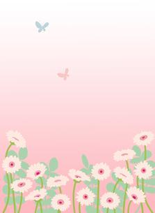 ペールピンクのガーベラと蝶のイラスト素材 [FYI02836795]