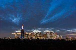 新宿ビル群の夜景の写真素材 [FYI02836880]