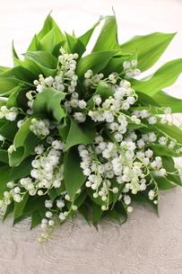 スズランの花束の写真素材 [FYI02836956]