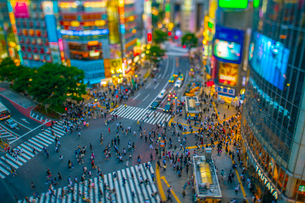 渋谷交差点チルトシフトの写真素材 [FYI02837000]